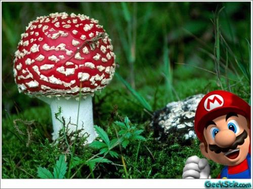 Real Life Mario SuperMushroom